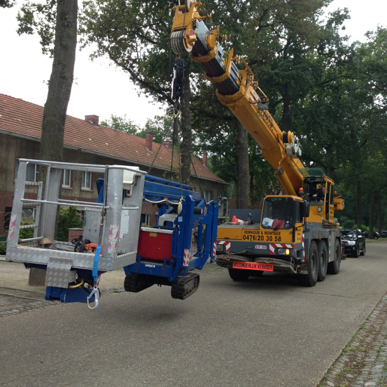 Gevaarlijke bomen verwijderen